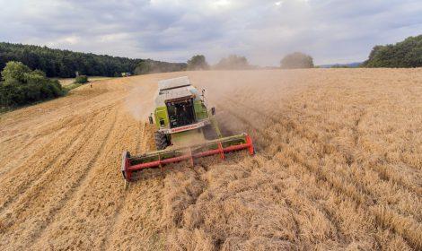 Land-, Agrar- und Forstwirtschaft